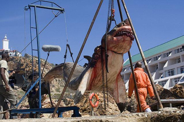 Living Megalodon Shark Caught on Tape by Fishermen: Fact Check