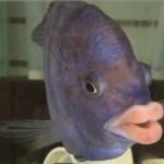 Image of Amusing Fish Having Lips Like Humans