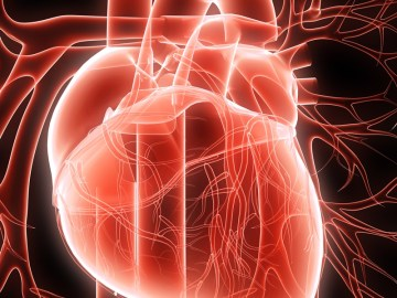 Image about Chelation Therapy Removes Heart Blocks Avoiding Bypass Surgery