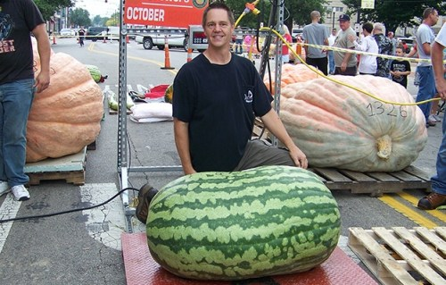 Image of Heaviest Watermelon: Guinness World Record