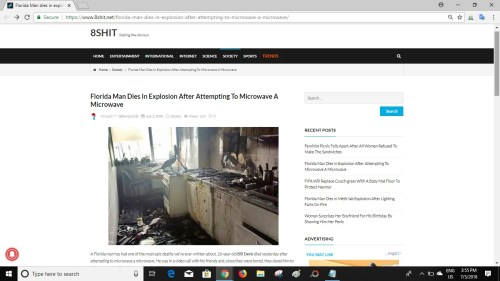 Screenshot of article on 8shit.net website