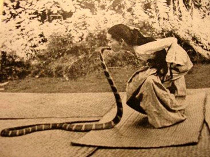 Image of Burmese snake charmer Saya Hnin-Mahla kissing one of her king cobra co-performers