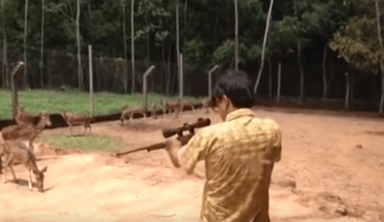 West Bengal Forest Officer Shot and Killed a Deer, Video: Fact Check