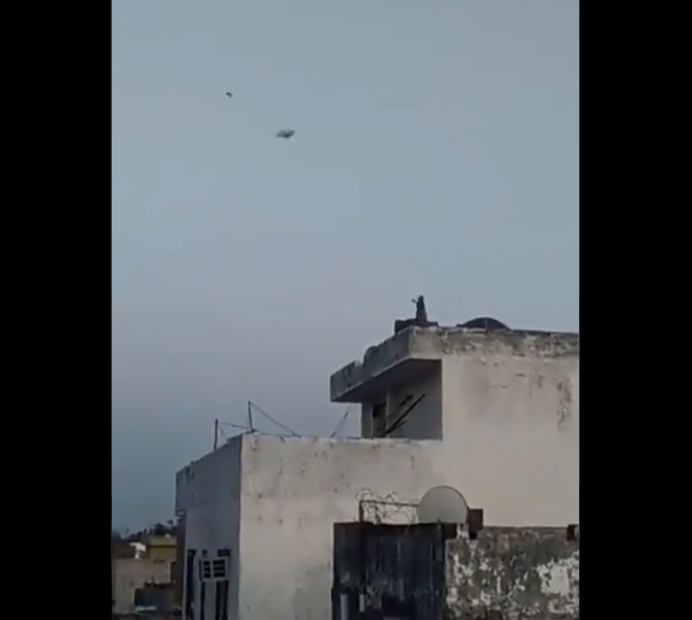 Image about Monkey Flying Kite Amid COVID-19 Lockdown, Video