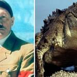 Image about Nazi Leader Adolf Hitler Had a Pet Alligator, Saturn