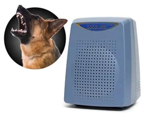 Electronic-Watchdog