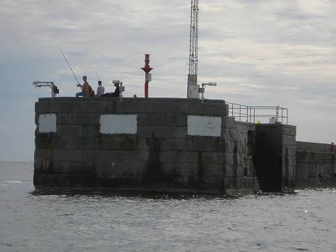 Angeln im Sommer auf Helgoland von den Molen aus, kann viele Fischarten fangen.
