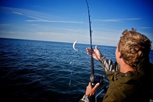 Makrelen angeln