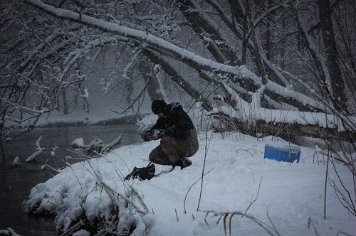 Winterangeln auf Weißfische