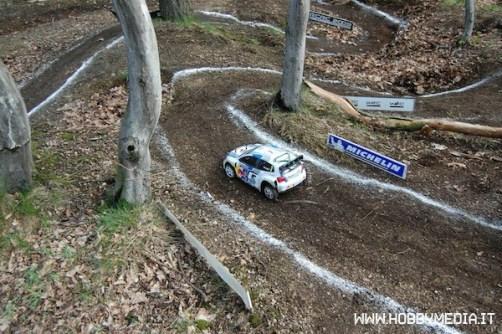 rc-rally-championship-2