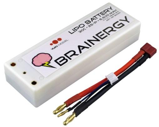 brainergy-lipo-yuki-model