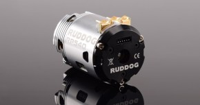 Ruddog RP540 Spec - motori brushless con timing fisso