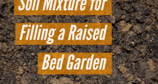 Soil Mixture for Filling a Raised Bed Garden