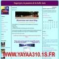 http://www.yayaa310.1s.fr