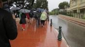 Rainy rain rain