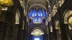 A fantastically huge organ