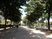 Walking in the shade along the Champs de Mars