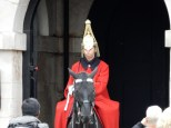 They're the Horse Guards