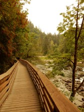 This boardwalk takes you to a vista of the falls from below