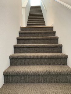 Our stairs have carpet, too