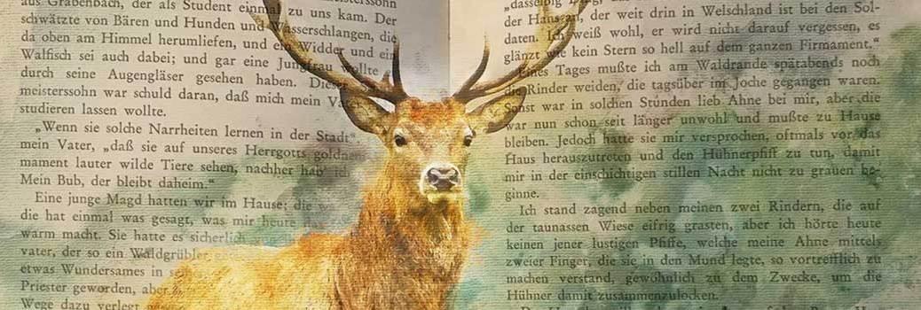 Collage – Hirsch vor aufgeschlagenem Buch