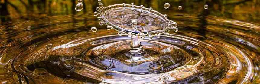 Das lebendige Wasser