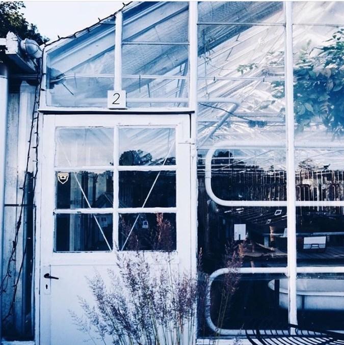 Rosendals Trädgård, Gewächshaus in Schweden, Stockholm
