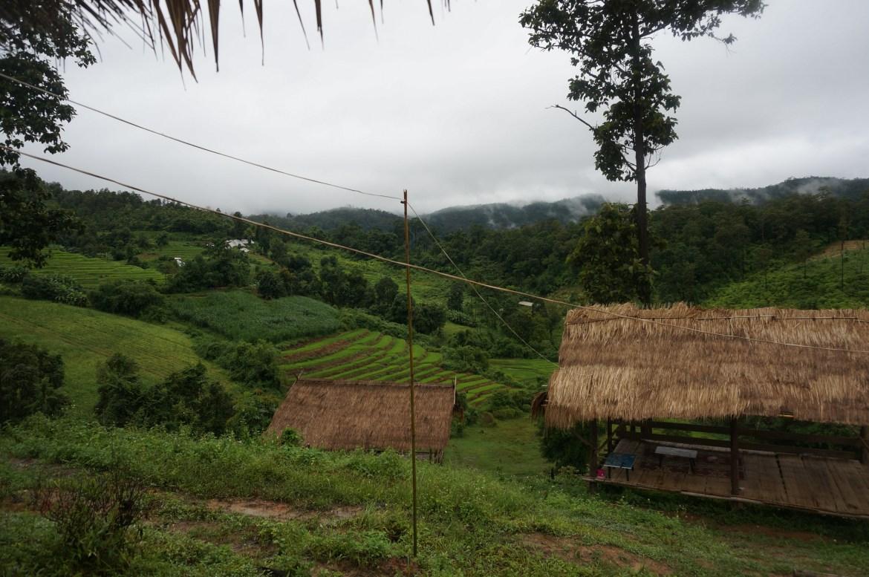 Reisfelder in Thailand, Aussicht