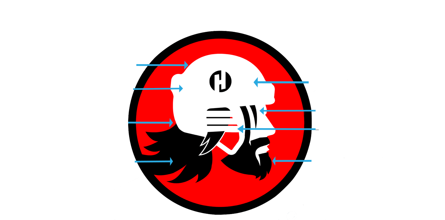 hockeyhairflow4-2