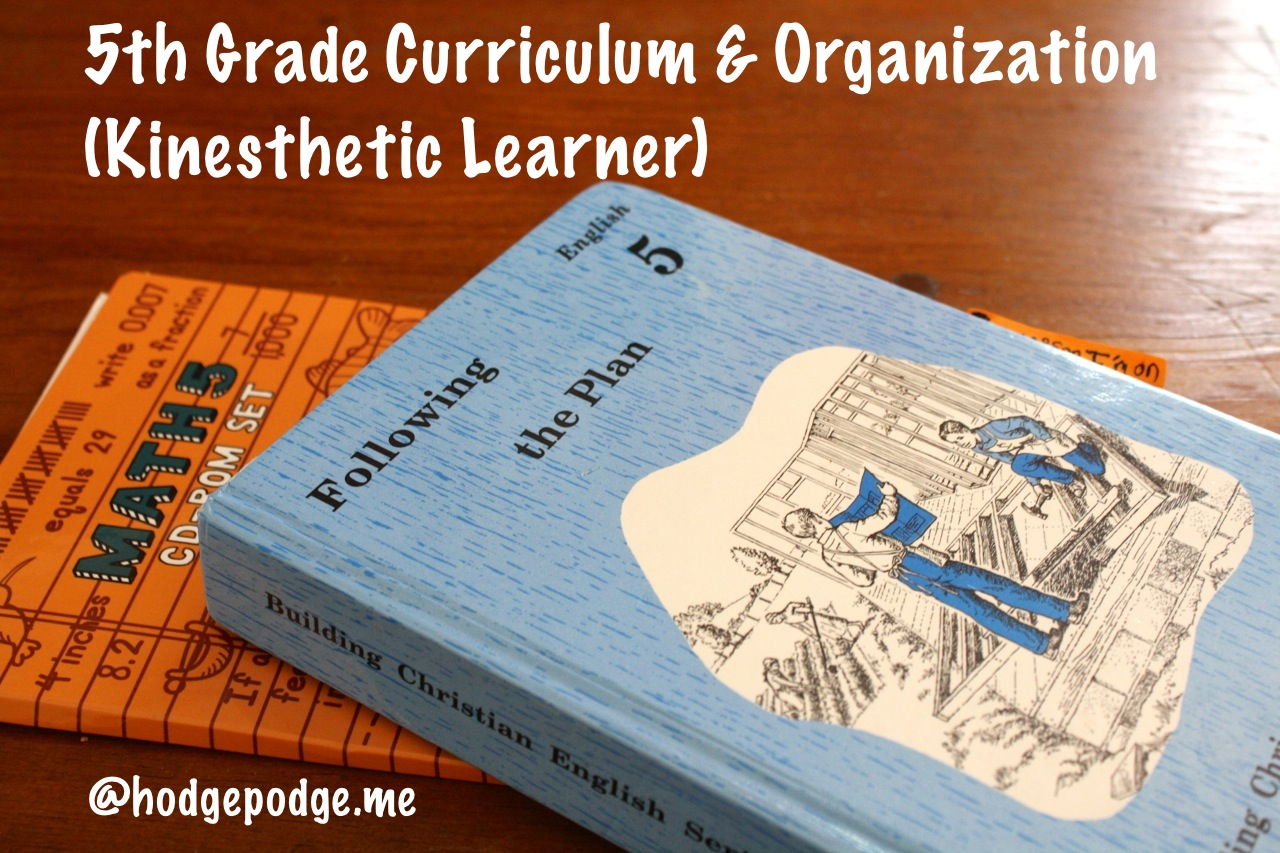 Fifth Grade Kinesthetic Learner Curriculum And Organization