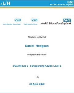 Mr Daniel Hodgson. Chimney sweep in Torbay Level 2 qualified by the NHS in safeguarding of adults