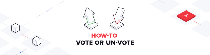 How to Vote for a Delegate