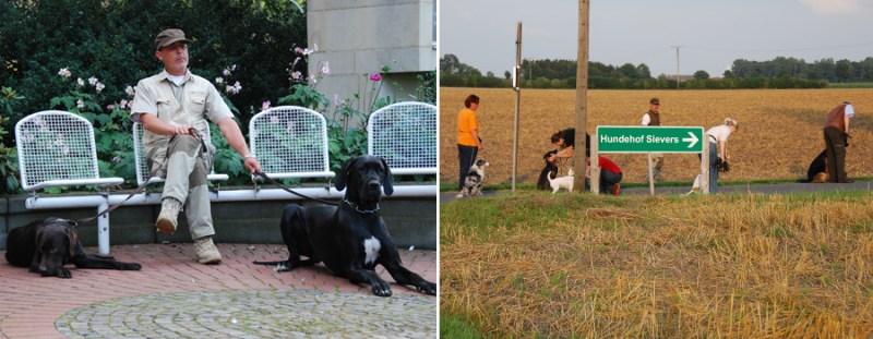 Hundeschule - Kompetenz nicht nur durch Erfahrung
