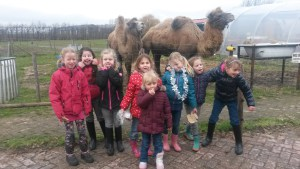 Kinderfeestje-Olivia-7jaar-1