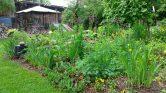 Der Garten