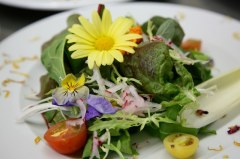 Blütensalat