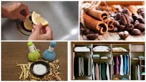 Como limpiar la campana extractora hogar cocina facil - Como limpiar el extractor de la cocina ...