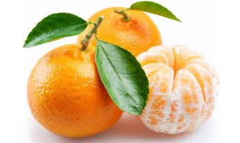 Resultado de imagen para mandarina