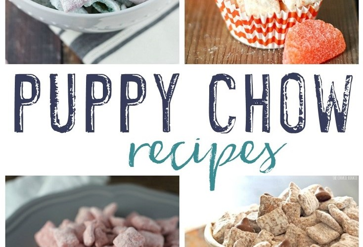 15 Tasty Puppy Chow Recipes
