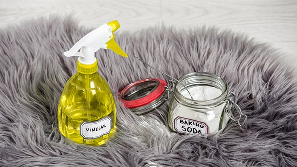 Holar - Blog - 11 Vinegar Cleaning Hacks You Have To Experience It Yourself - Clean Carpet Using Vinegar