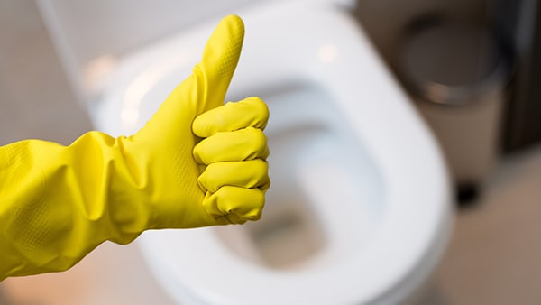 Holar - Blog - 11 Vinegar Cleaning Hacks You Have To Experience It Yourself - Clean Toilet Using Vinegar