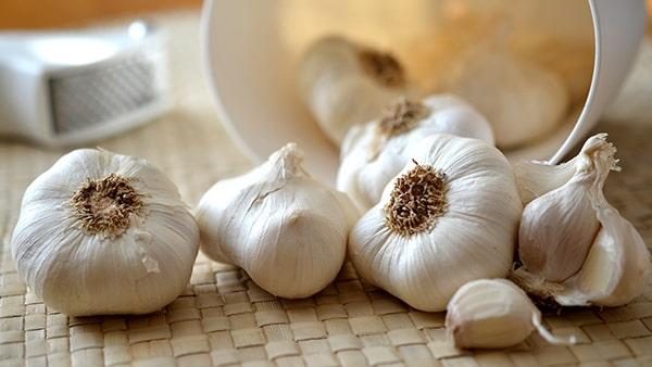 Holar - Blog - 9 Best Foods to Strengthen Your Immunity against Coronavirus - Garlic - 2