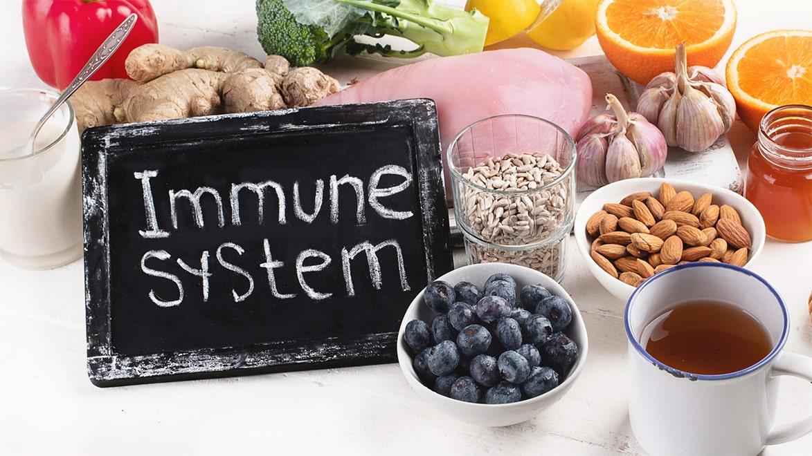Holar - Blog - 9 Best Foods to Strengthen Your Immunity against Coronavirus