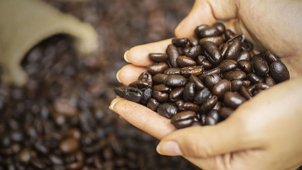 Holar - Blog - How to Improve Your Coffee Taste Secrets from Baristas - 2