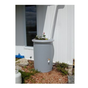 75 US Gallon Rain Barrel
