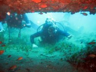 Learn diving on Holiday in Greece