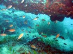 Learn diving on holiday on Crete