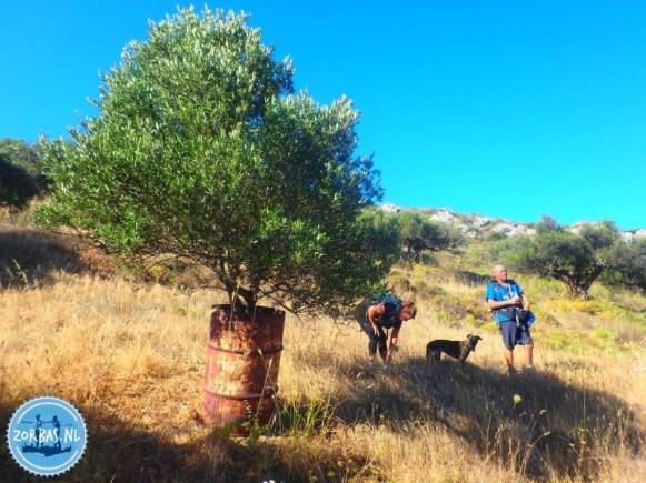 week-walking-Crete-spring-summer-autumn-winter