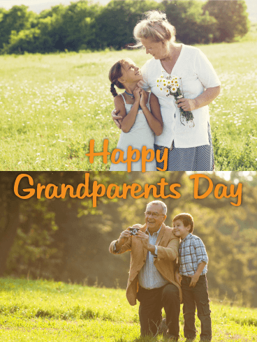 Fun Day Grandparents Day Card Birthday Amp Greeting Cards