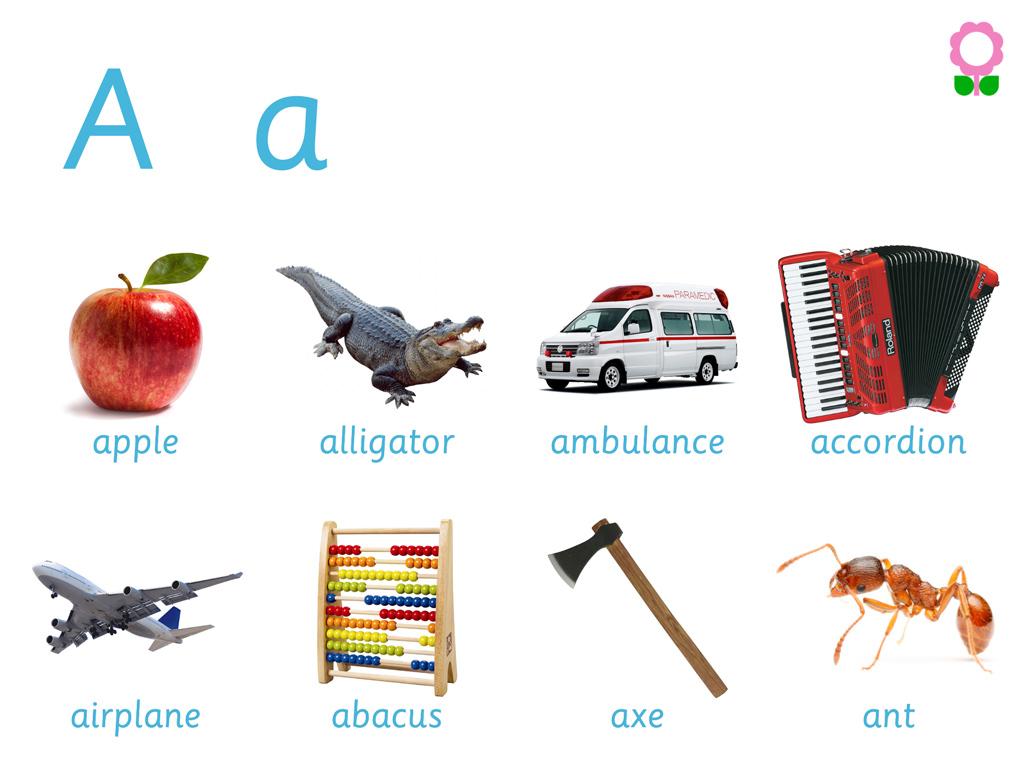 Alphabets Vocabulary Book For Preschool Kids